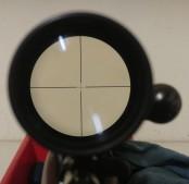 lsr-sights